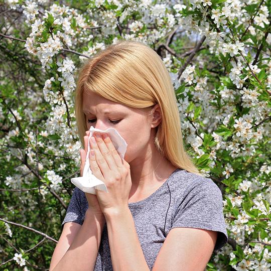 Allergie | Erboristeria Il Girasole Ravenna