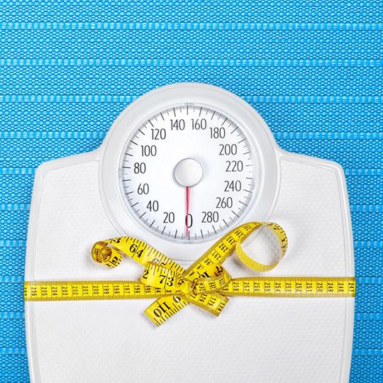 Sovrappeso | Erboristeria Il Girasole Ravenna