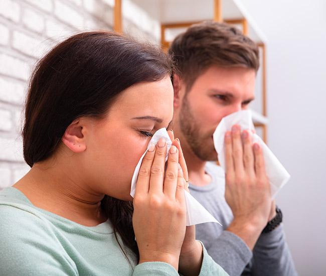 Prevenire è meglio che curare | Erboristeria Il Girasole