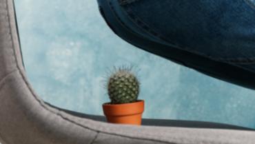 Emorroidi – Sintomi, consigli e rimedi per prevenirle e combatterle